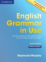 english grammar in use without answers photo