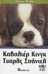 kabalier kingk tasrls spaniel photo