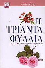 i triantafyllia photo