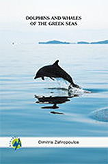 dolphins and whales of the greek seas photo