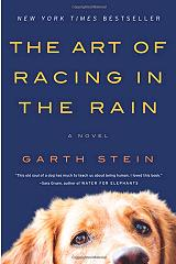 the art of racing in the rain photo