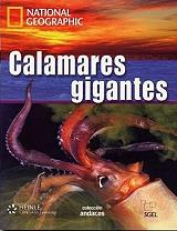 calamares gigantes dvd photo