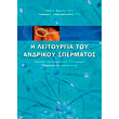 i leitoyrgia toy andrikoy spermatos photo