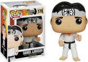 popmovies the karate kid daniel larusso photo