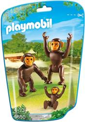 playmobil 6650 oikogeneia ximpatzidon photo