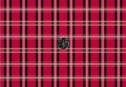 g cube a4 gsp 19r mad for plaid red trim to fit notebook skin 17  photo