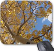 gembird mp v1c superior picture mouse pad tree photo