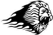 windowsticker lion 002 black photo