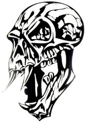 windowsticker skull 006 black photo