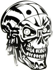 windowsticker skull 008 black photo