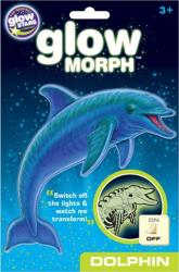 glow morph dolphin photo
