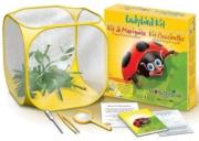world alive ladybird kit photo